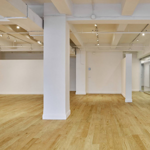 264 W 40th St 502, New York, New York 10018, ,Office,Landlord Direct,264 W 40th St,W 40th St,5,1288